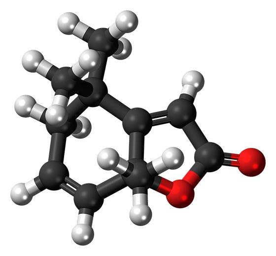 Что такое молекула?