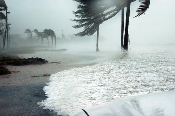 Что такое ураган и чем он опасен?