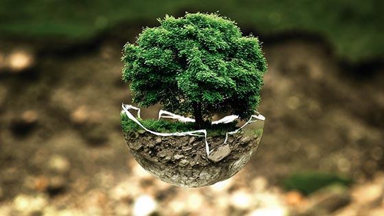 Что такое литосфера и из чего она состоит?