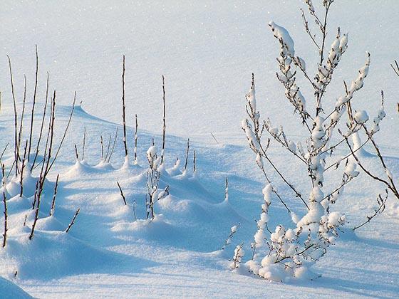 Что такое снег и откуда он берётся?