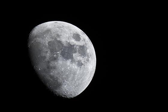 Гипотезы о том, есть ли жизнь на Луне