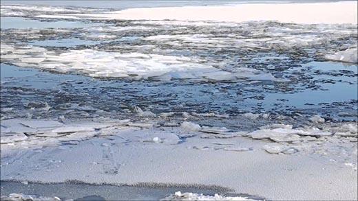 Что такое ледостав и чем он отличается от ледохода?