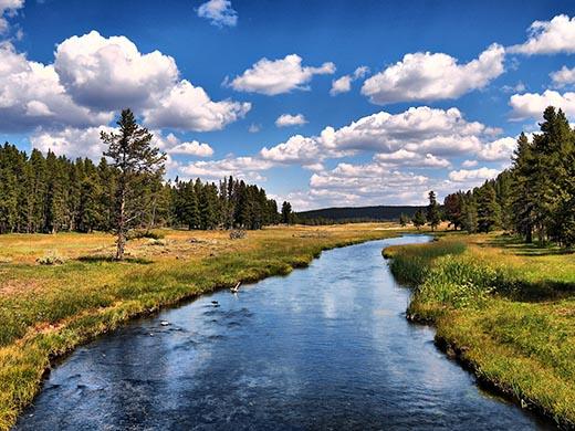 Что такое русло реки?