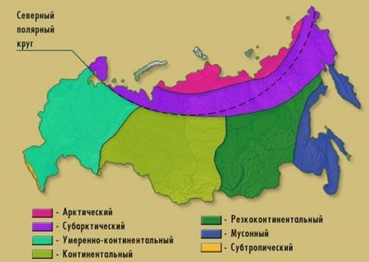Какие климатические пояса есть в России?