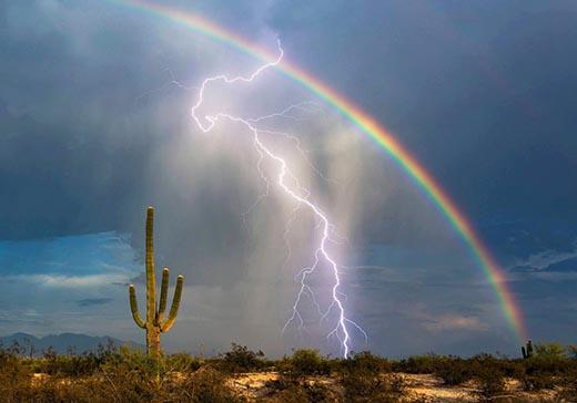 Почему радуга не всегда появляется после дождя?
