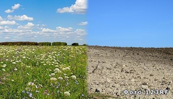 Агроклиматические ресурсы местности