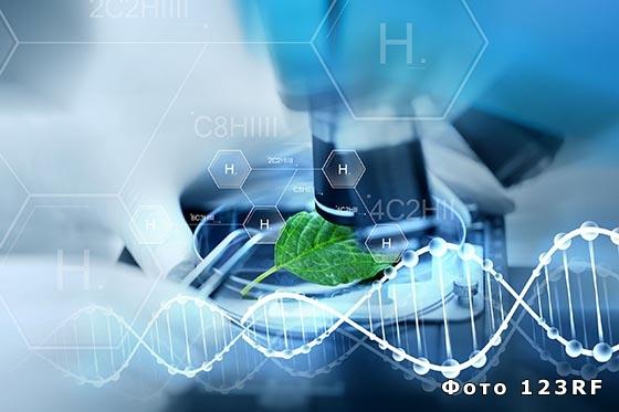Что такое биотехнология?