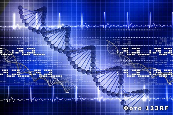 Что такое гены, геном и генетический код?