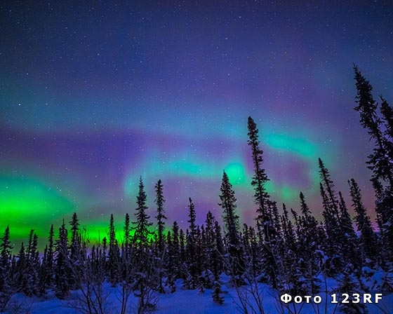 Что такое полярная ночь и полярный день?