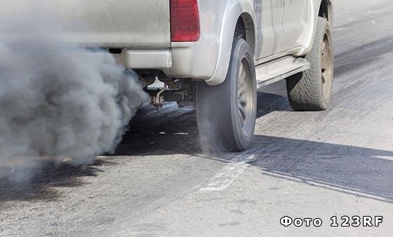 Что такое экологическая катастрофа?