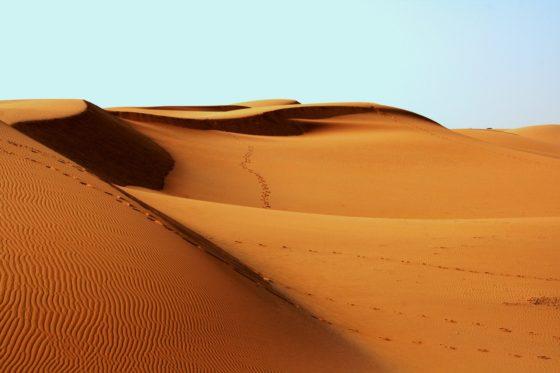 Что такое дюны и барханы? Как они образуются?