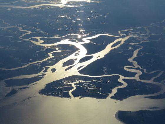 Что такое дельта реки в географии?