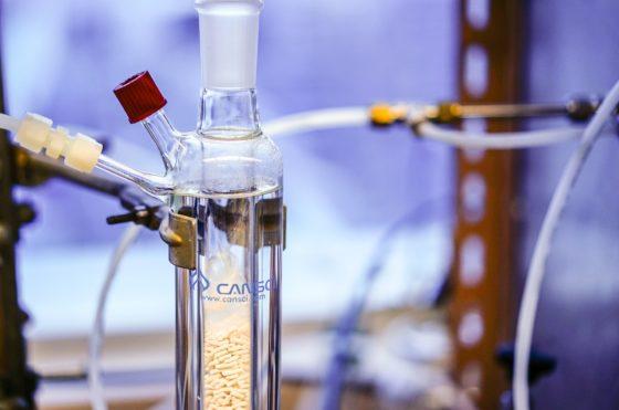 Какие вещества относятся к органическим, а какие к неорганическим?