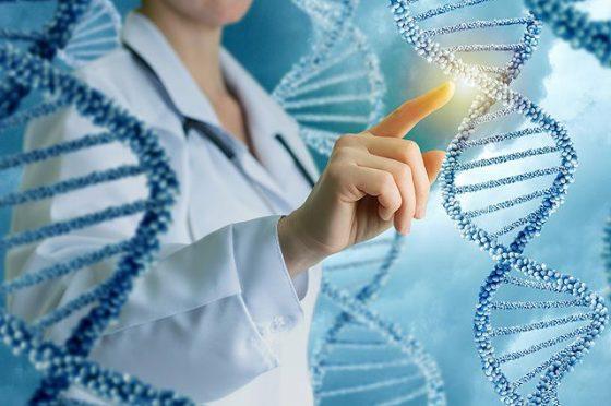 Стволовые клетки в медицине