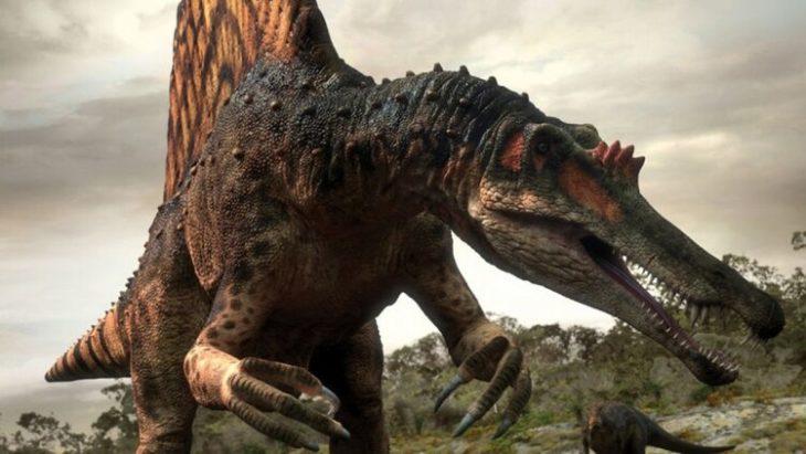 Архозавры — первые предки динозавров