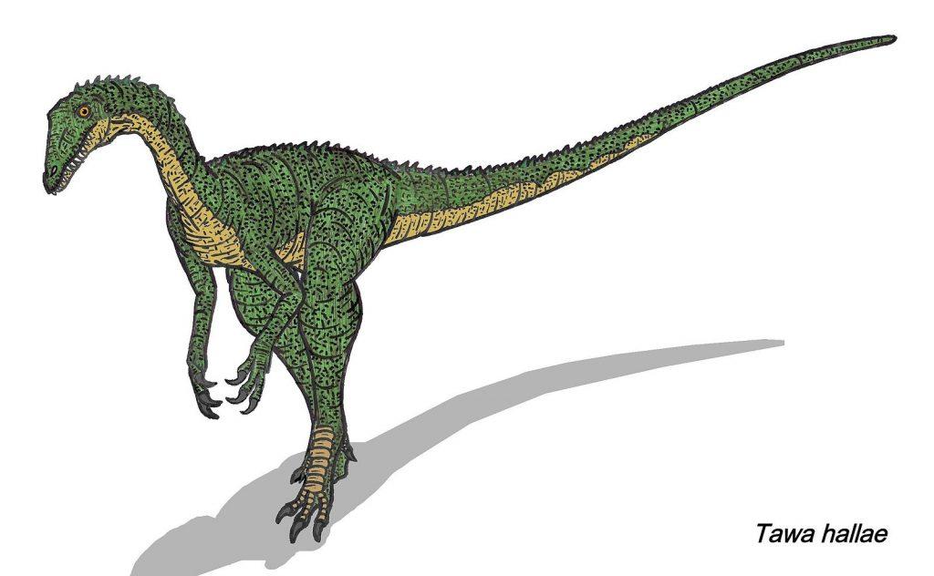 Вымирание дракораптора
