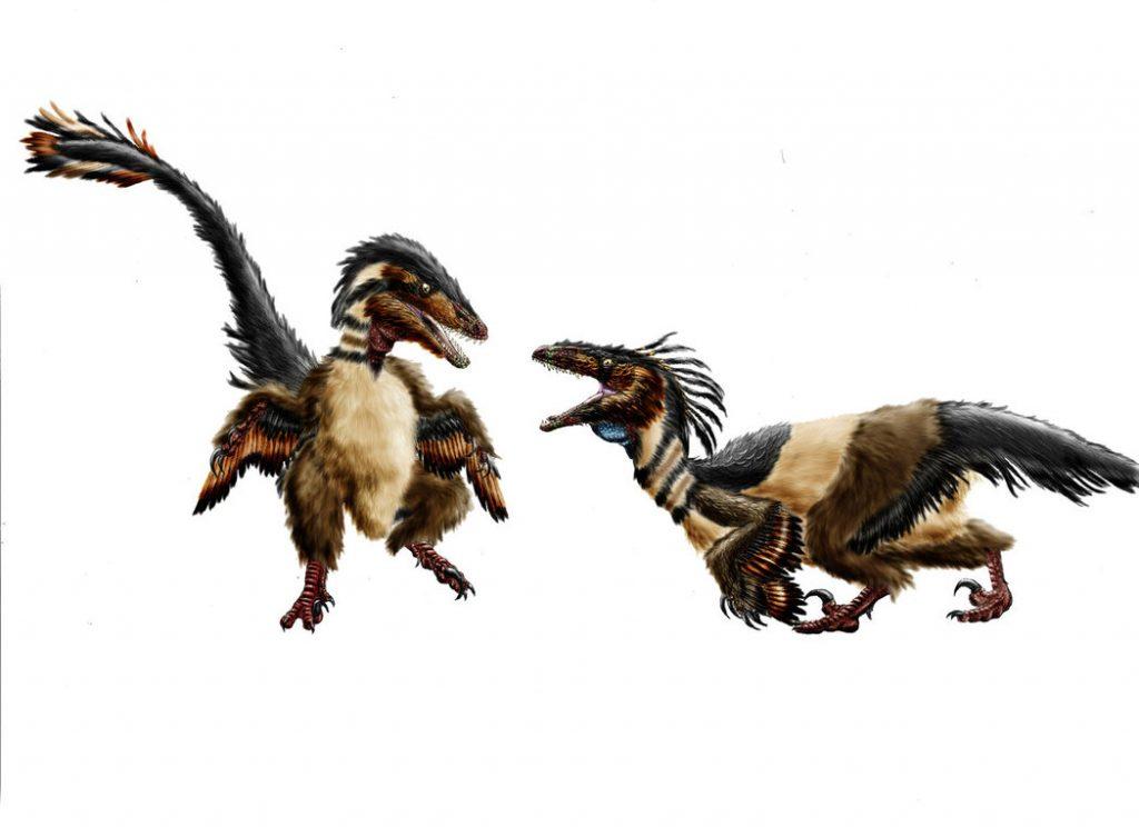 Хищный динозавр ахиллобатор