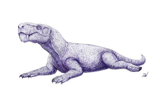 Горгонопс -главный хищник того времени