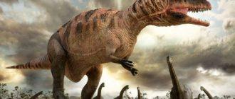 Динозавры Северной Америки