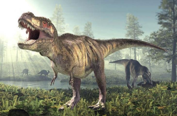 Тиранозавр (Tyrannosaurus)