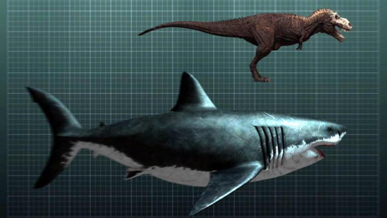 Самый сильный хищник доисторического мира