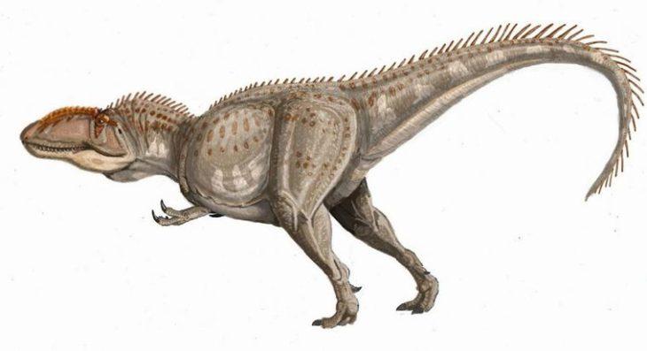 Чем питался гиганотозавр