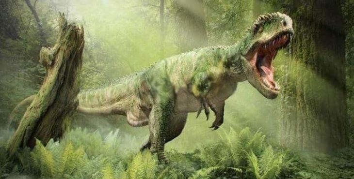 Мощность и размер тиранозавра