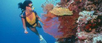 Чем занимается океанолог?