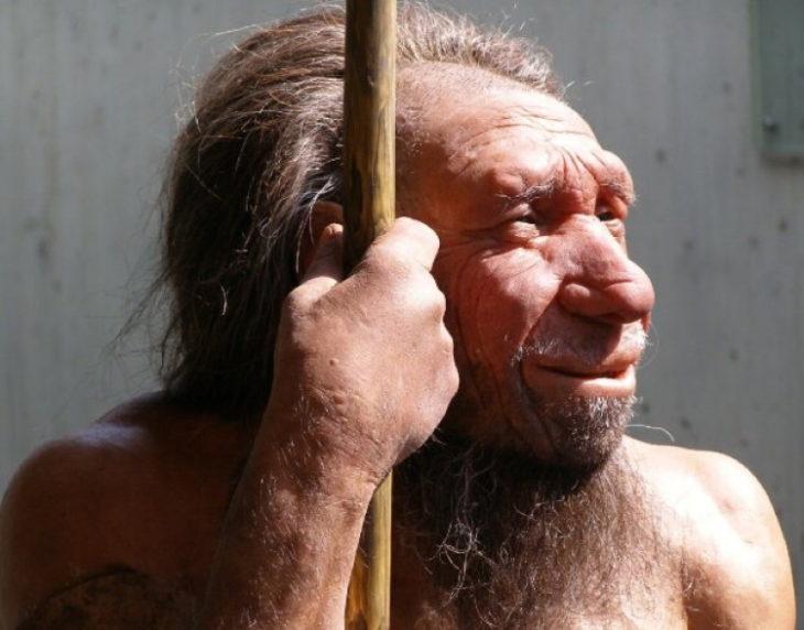 Образ жизни неандертальцев