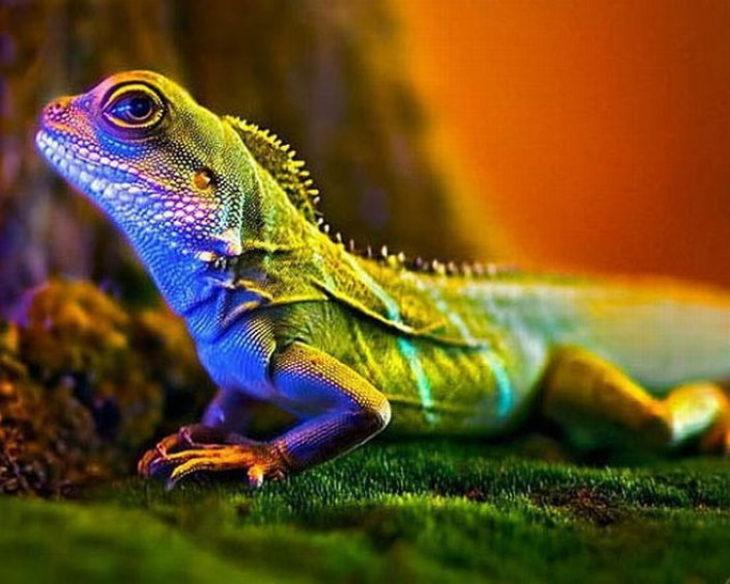 Виды рептилий